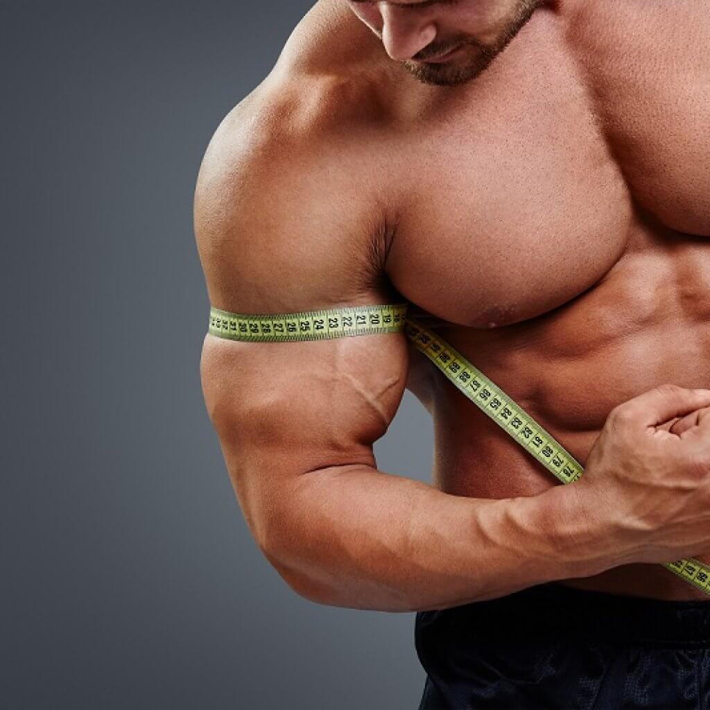 Muscle-Growth-Male-1024x1024.jpg